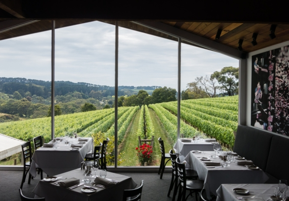 the-restaurant-at-paringa-estate-winery-the-mornington-peninsula-wine-region-victoria-australia-and-its-great-view-of-the-estate-vineyards