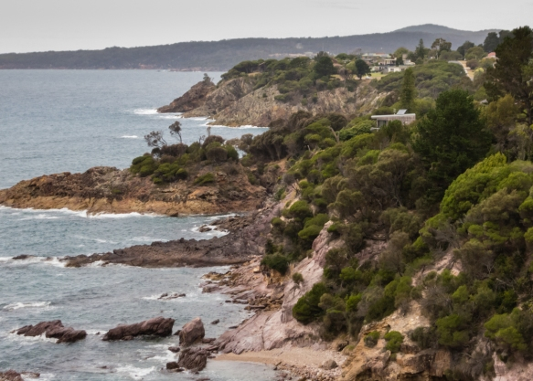 the-rugged-coast-along-twofold-bay-and-calle-calle-bay-parts-of-the-south-pacific-ocean-around-eden-have-numerous-homes-tucked-into-the-forested-promontories-new-south-wales-australia