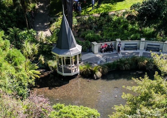a-gazebo-and-pond-in-the-center-of-the-wellington-botanic-gardens-wellington-new-zealand