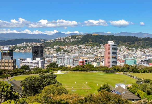 a-view-of-the-harbor-and-downtown-from-the-kelburn-lookout-at-the-top-of-the-wellington-cable-car-line-wellington-new-zealand