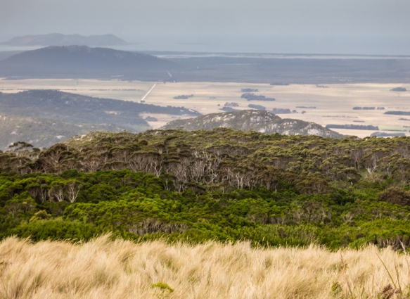 one-of-the-four-quadrant-views-from-walkers-lookout-on-mt-leventhorp-the-highest-point-on-flinders-island-tasmania-australia