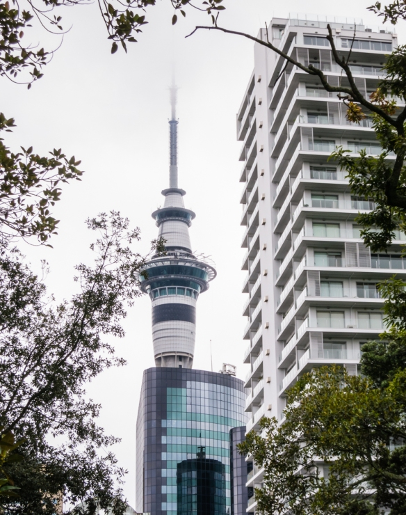 sky-tower-aucklands-most-famous-structure-viewed-from-albert-park-and-the-auckland-art-gallery-toi-o-tamaki-auckland-new-zealand
