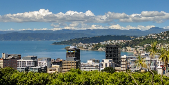 the-view-of-downtown-wellington-and-the-wellington-harbor-new-zealand-from-the-wellington-botanic-gardens