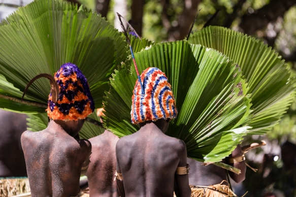 At the beginning of the dance, the boys_ faces were hidden behind green leaf fans, but they proudly introduced their individually hand crafted, colorful head dresses, Ceremonial Dance