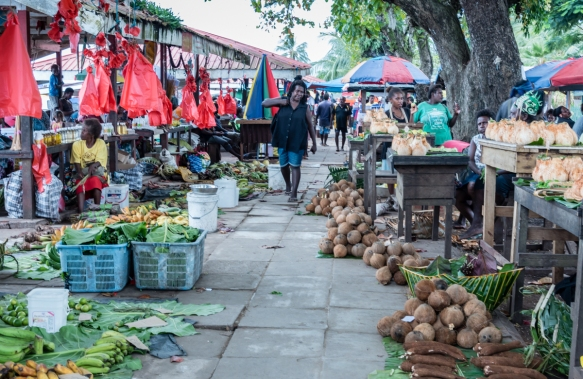 Coconuts, yams, bananas, betel nuts, oil, etc. are popular products for sale in the Central Market, Gizo, Ghizo Island, Solomon Islands