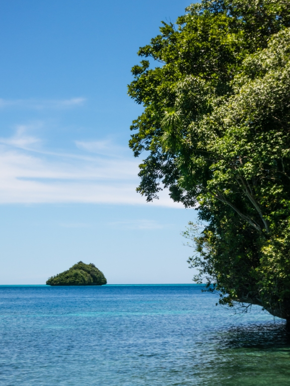From the beach where we stopped, islands small and large were scattered across the horizon, Palau