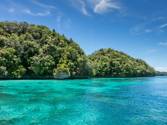 In the center of the Coral Triangle, the reefs and ocean floor were covered with a spectacular array of varied corals – different species, colors, forms, shapes and sea life swimming a