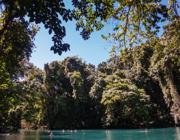 the-riri-riri-river-blue-hole-was-a-perfect-spot-for-a-morning-swim-luganville-espiritu-santo-vanuatu