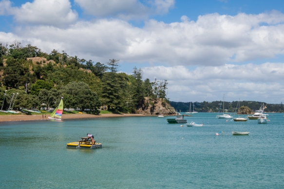 the-southern-side-of-town-overlooking-kororareka-bay-is-all-new-zealand-recreational-reserves-russell-bay-of-islands-new-zealand