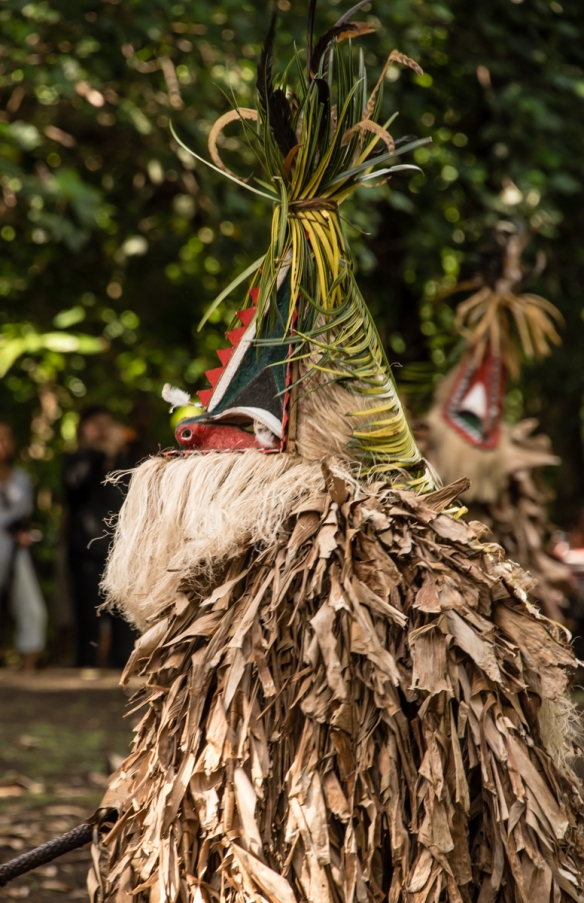 this-costumed-dancer-is-not-some-one-you-want-to-meet-in-your-nightmares-ambrym-island-vanuatu