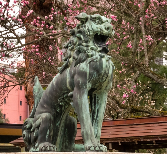 "One of a pair of Japanese temple guard ""lions"" by the main gate, with cherry blossoms beginning to bloom, Oyama Jinja Shrine, Kanazawa, Honshu Island, Japan"