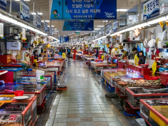 One of the aisles of the Jagalchi Fish Market, Busan, South Korea_s largest seafood market