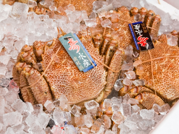 "These sweet and quite tasty ""hairy crabs"" are very popular in Hakodate, Hokkaido Island, Japan; a medium size crab sells for approximately US$40 and a larger crab can go for as much"