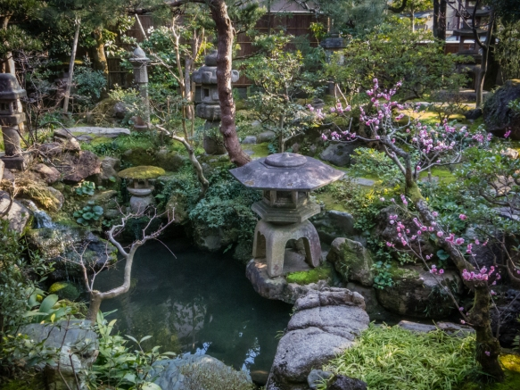 This private garden with a small pond on the grounds of Nomura Samurai House, Kanazawa, Honshu Island, Japan, was strategically positioned so that it was visible from many rooms of the h