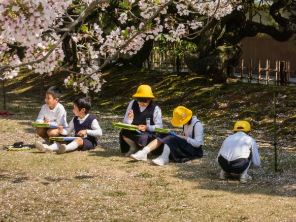 We found that Japanese of all ages enjoy and celebrate the short Sakura season which marks the end of winter and the arrival of spring and a revival of life and spirits, Ritsurin Garden,