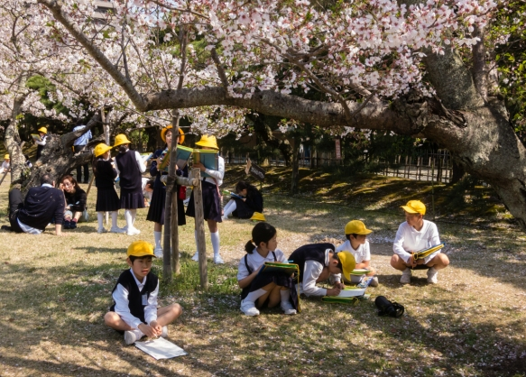 When we entered Ritsurin Garden, Takamatsu, Kagawa, Japan, we discovered a field trip of local elementary school children whose assignment was to sketch their interpretations of the Saku