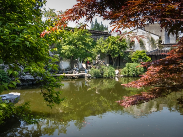 The pond in The Garden of Cultivation, a UNESCO World Heritage Site in the center of the city, Suzhou, China
