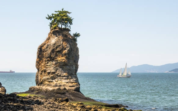Everyone reaching Prospect Point at the northern tip of Stanley Park, Vancouver, British Columbia, Canada, is surprised to find the tree growing out of the top of the rock column