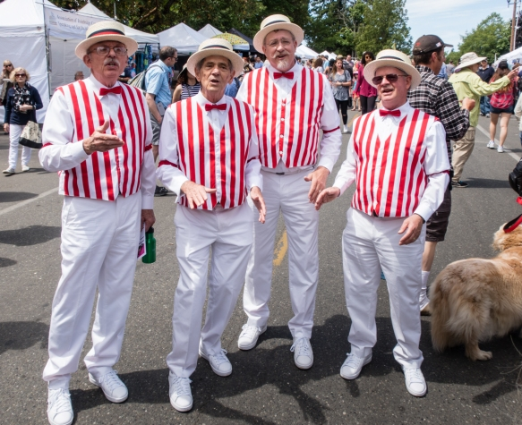 Four locals sing together throughout the year as a Barbershop Quartet, singing here at the Street Fair at the Grand Old 4th on Bainbridge Island, Washington, USA