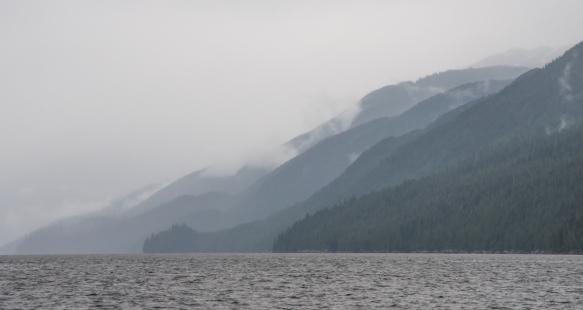 Late afternoon Zodiac cruise around New Eddystone, Misty Fjords, Ketchikan, Alaska, USA, #7