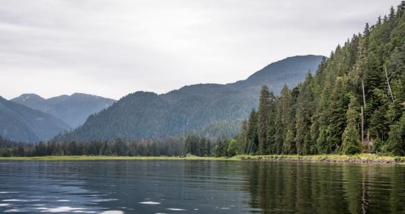 Mid-day Zodiac cruise around Smeaton Bay, Misty Fjords, Ketchikan, Alaska, USA, #4