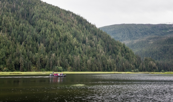 Mid-day Zodiac cruise around Smeaton Bay, Misty Fjords, Ketchikan, Alaska, USA, #6
