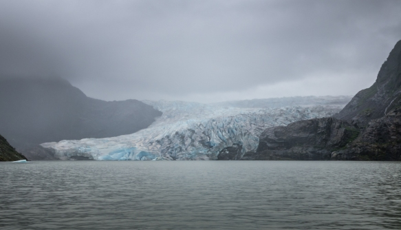 Our first full view of the tidewater entrance of the Mendenhall Glacier into Lake Mendenhall, Juneau, Alaska, USA