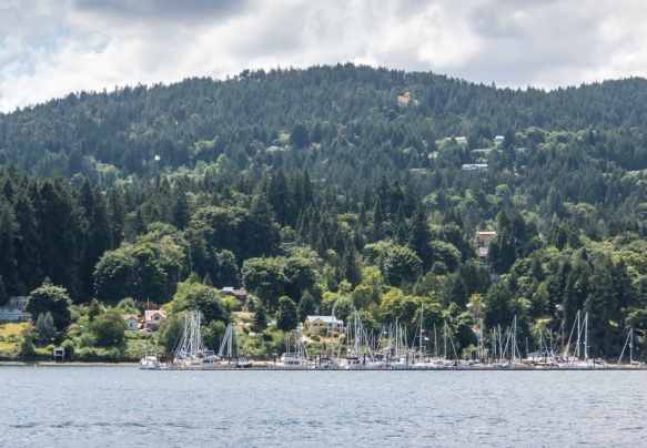 Sailing is very popular in Salt Spring Island, British Columbia, Canada, with a number of marinas around the main port town of Ganges Village (pictured)