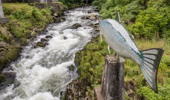"The salmon sculpture is an artwork titled ""Yeltatzie Salmon"" by artist Terry Plyes and was dedicated above Ketchikan Creek on July 4, 2013, Ketchikan, Alaska, USA"