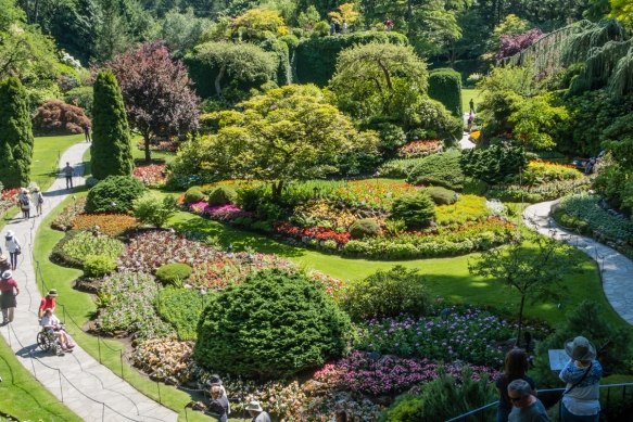 The Sunken Garden is part of the exhausted limestone quarry that has been beautifully transformed into a major attraction at The Butchart Gardens, Victoria, British Columbia, Canada