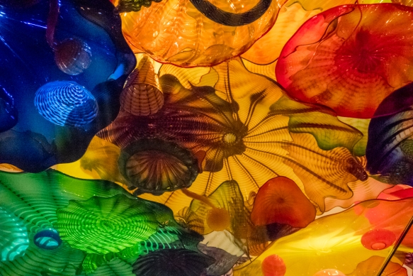 "These glass sculptures, known as the ""Persian Ceiling"", are viewed through a glass ""shelf"" above visitors and appear as an ""aquarium"" full of sea life; Chihuly Garden and Gla"