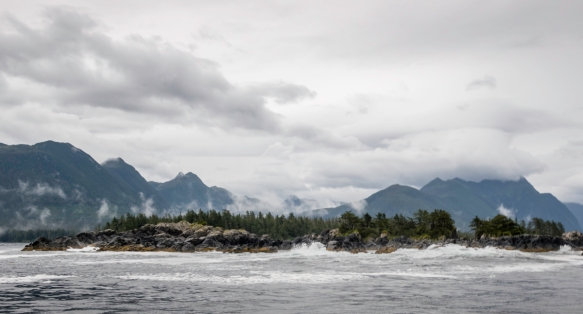A group of six of us chartered Captain Lucas_s expedition style catamaran from Allen Marine Tours for the morning and we toured Sitka Sound and the islands near Sitka, Alaska, USA