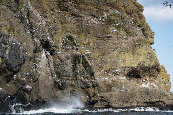 Delarof Harbor, Unger Island, Alaska, USA -- #10