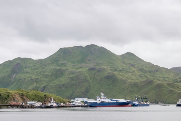 The Alyeska Seafoods processing facility on Unalaska Island, across the bay from Dutch Harbor, Amaknak Island, Alaska, USA