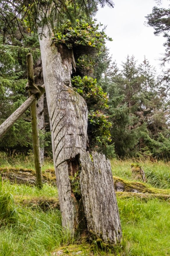 The eagle_s wing is still recognizable on this tilted totem pole – in a number of years it, too, will fall to the ground and further decay, K_uuna Llnagaay (Skedans), Queen Charlot