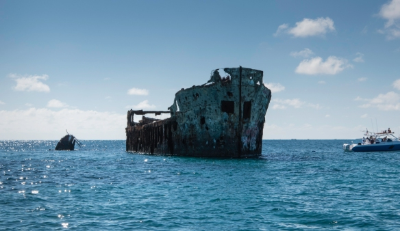 As part of our morning Yacht Club boat outing, we snorkeled around the SS Sapon, a concrete-hulled cargo steamer that was used as a warehouse for alcohol during the era of Prohibition an