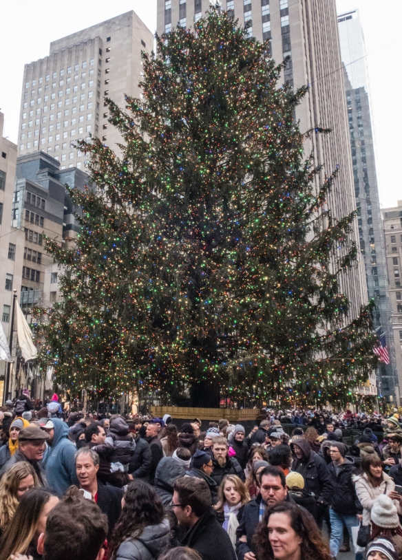 The Christmas tree at Rockefeller Center is lit every year after Thanksgiving, a tradition that began in 1933, New York, New York, USA
