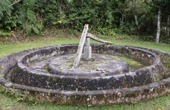 The outdoor circular platform for crushing the dried coffee beans (the long wooden rod was pulled in a circle by a horse with a stone wheel in the track cracking the beans), Gran Parque