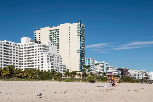 Condominiums and hotels are cheek-and-jowl all along the Atlantic Ocean waterfront in Miami Beach, Florida, the peninsula on the east side of Biscayne Bay and the city of Miami