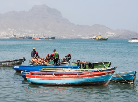 Fishermen delivering their catch to the city_s daily fish market, Mercado de Peixe, Mindelo, São Vicente, Cape Verde (Cabo Verde)