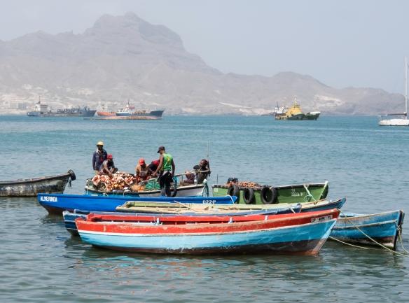 Fishermen delivering their catch to the city_s daily fish market, Mercado de Peixe, Mindelo, São Vicente, Cape Verde (Cabo Verde)