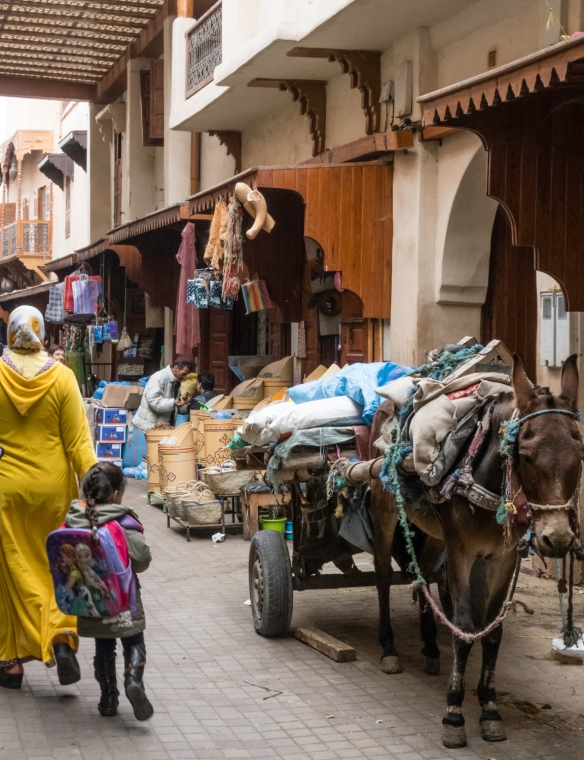 Goods being delivered to shops in Hayel Mella (the old walled Jewish quarter) arrive by hand, hand-cart, and mule carts; Marrakech, Morocco