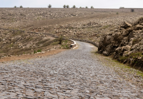 The road climbing to the summit of 750 m (2850 feet) tall Monte Verde (Green Mountain) – a national park – is paved with granite and basalt cobblestones, making for a really washboar