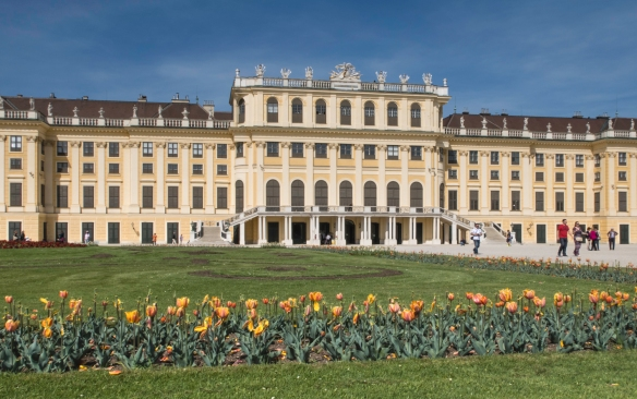 Spring tulips blooming in the gardens of the magnificent imperial Schönbrunn Palace, the Hapsburgs_ summer palace within the city limits of Vienna, Austria