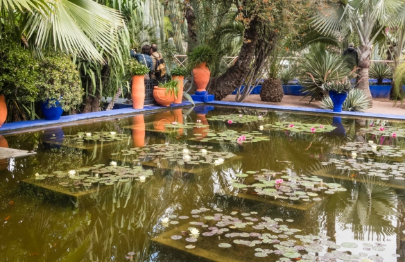 The lily pond is a quiet oasis in the middle of Jardin Majorelle (Majorelle Garden), Marrakech, Morocco