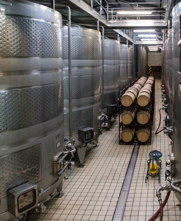 The main fermentation room at the Juan Gil winery, Juan Gil Bodegas Familiares (Gil Family Estates), Jumilla, Spain
