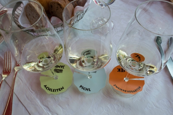 Wine tasting of Jamek Estate Winery Grüner Veltliner and Riesling wines, Joching, Austria