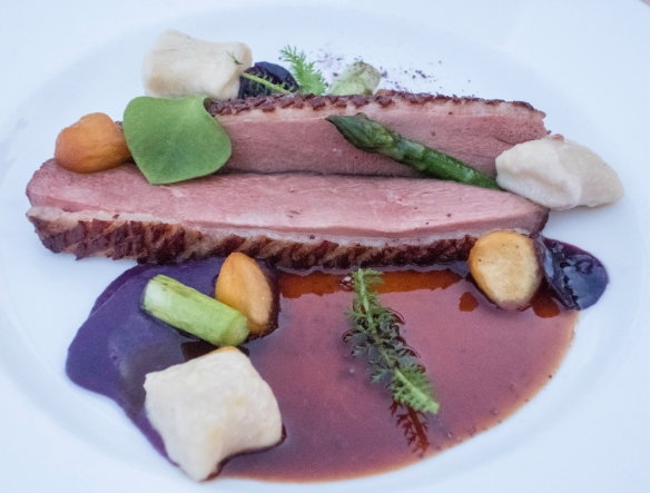 An entrée of duck breast with gnocchi and vegetables, Restaurant Terasa U Zlaté studně, Prague, Czech Republic