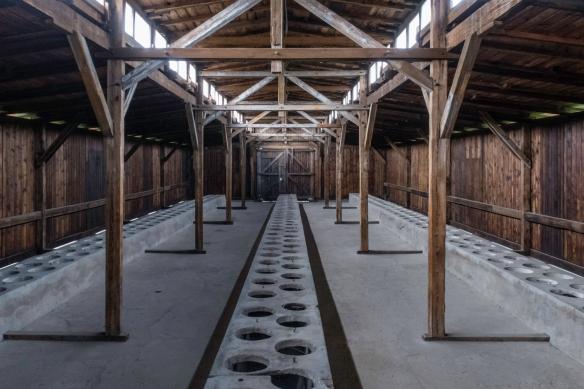 A latrine building served many barrack buildings, Birkenau, Oświęcim, Poland