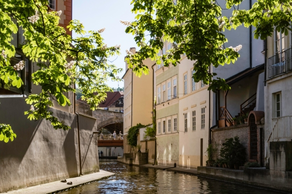 "Canals in Prague? This small channel off the main section of the river is known locally as ""Little Prague Venice"", or Čertovka in Czech, and was built in the 12th century by the O"